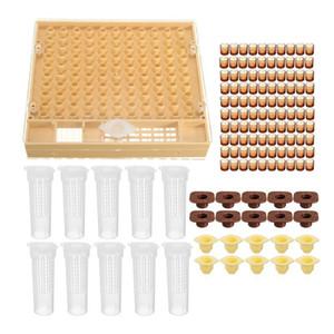 Hot Beekeeping Cup kit 100 Coppe Cellule Ape Set di Strumenti Queen Sistema di Allevamento Ape Catch Cage Completo Apicoltura helper spedizione gratuita