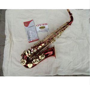 OVES Alto Eb Tune Saxophone E-Flat Estudiantes Profesionales The Special Red Lacquer Tube Chapado en oro Pearl Button Sax con estuche