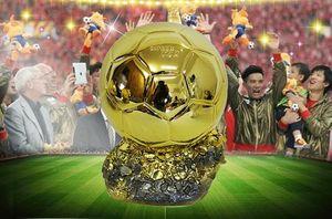 الراتنج كرة القدم كأس العالم بالون D'OR الكأس السيد لكرة القدم جوائز أفضل لاعب الكرة الذهبية لكرة القدم لتذكار أو هدية