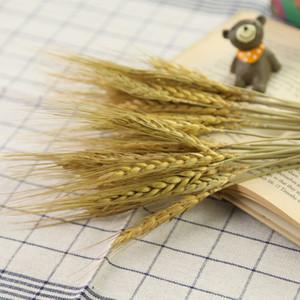 Buğday Flowe Yapay Buğday Pirinç Plastik Çiçek Dalları Ev Dükkan Bahçe Düğün Dekor Fotoğraf Sahne Aksesuarları