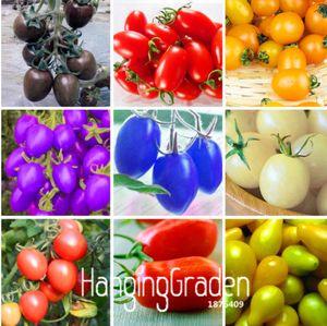 Novas Sementes Frescas 7 Tipos De Semente De Tomate Cereja Delicioso Frutas Sementes Legumes Em Vasos de Bonsai Planta Em Vaso Tomates Sementes 200 PCS / saco