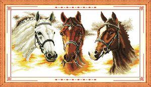 Три лошади домашнего декора картины, ручной работы вышивки крестом рукоделие наборы счетный печать на холсте DMC 14CT / 11CT