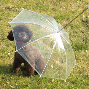 Pet Umbrella Dog Umbrella mit Leine Easy View Klarer transparenter faltender Welpenregenschirm für kleine Hunde Welpen