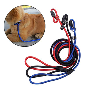 Pet Dog Nylon ajustable collar de entrenamiento Loop Slip Leash cuerda plomo pequeño tamaño rojo azul negro Color