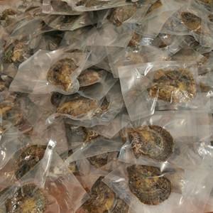 Akoya Pearl Oyster Runde 6-7mm Farben Meerwasser natürlich Züchtete Oyster Pearl Farm Supply Bestes Geschenk