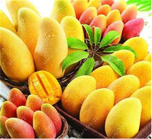2 шт./пакет семена манго, мини-манго дерево семена, бонсай дерево семена, органические фрукты и овощи семена, горшок для домашнего сада посадки