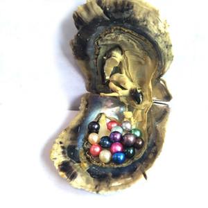 Akoya Pearl Oyster 2018 rotonda 5-7mm Colori di acqua di mare di perle naturali coltivate Fresh Silver Pearl cozze Farm Supply DHL di spedizione libero all'ingrosso