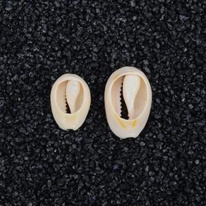 50 unidades 1.8-2.3 cm Playa Natural Mar Shell Beads Cowry Cowrie Beads para la joyería DIY haciendo collar pulsera regalo para el amigo