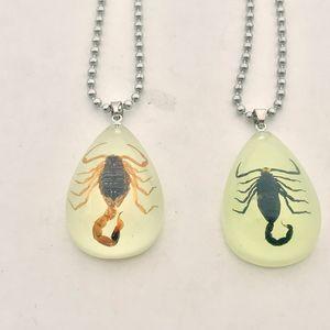 Moda Nero Marrone Imitazione Ambra Reale Scorpione Gioielli Collane con ciondolo Per uomini donne Regali d'amore (bagliore nel buio)