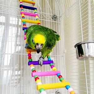Renkli Kuş Merdiven Parrot Cockatiel Conure Parakeet Küçük Amerika papağanı 80cm için kuş oyuncaklar Kafes Aksesuarları Salıncak
