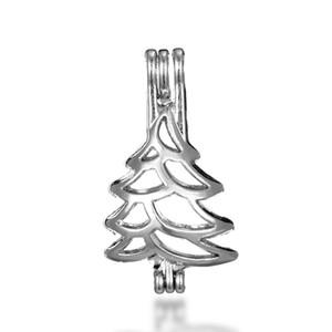 İnci kafes kolye kolye, uçucu yağ difüzörü, Noel ağacı gümüş kaplama 10pc sunan - artı kendi incisi daha çekici hale getirir