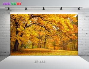 Vinyle Custom Easter day theme Photographie Décors Prop numérique imprimé Photo Studio Fond ZP-153