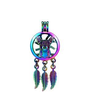 C792 5 шт. / Лот цвета радуги Beaty Dream Catcher Leaf Cage кулон жемчужный медальон сказка ну вечеринку