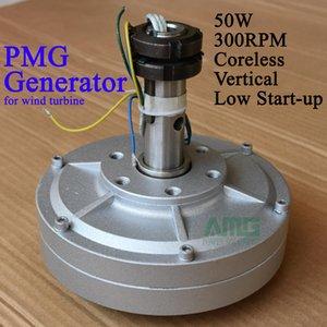 50W 300 giri / min 12 / 24Vcc a bassa velocità a basso avvio per alternatore generatore senza nucleo a magnete permanente fai-da-te