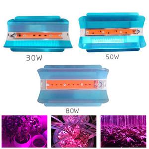 Full Spectrum principali si sviluppano chiari 30W 50W 80W COB LED coltiva della luce di inondazione di CA 110V 220V IP67 impermeabile per Serra pianta idroponica