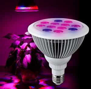 12 W 24 W PAR38 E27 LED Crece la Luz Interior de la Planta Bombilla Jardín Invernadero Planta Hidropónica Voltaje de Entrada de Espectro Completo AC 85-265 V
