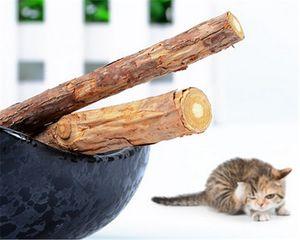 dentes de limpeza gato 5PCS catnip naturais gato de estimação de pasta de dente molar lanches vara silvervine actinidia gato varas cuidado do dente Pure
