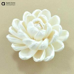 Toptan Satış - Diffüz / Dekoratif Kurutulmuş Çiçek kamış diffüz / Sola çiçek / nilüfer olmadan Su zambak için Toptan-Doğal El Yapımı Kuru Çiçek