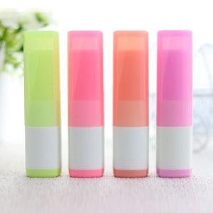 4g Şeker Renkler Ruj Tüpleri Konteynerler Boş Plastik Dudak Balsamı Tüpler HıZLı KARGO F776