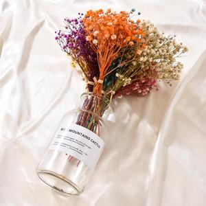 Fiori secchi naturali Bouquet secco Fiori Press Mini Fotografia decorativi Photo Sfondo Decor