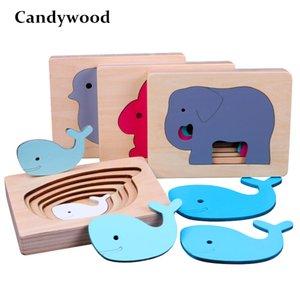 Quebra-cabeças 3D animal de Candywood Brinquedos de madeira Tamanho Gradiente de cor Multi-camada enigma Crianças Brinquedos Educativos Y200317
