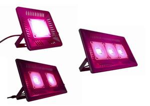 뜨거운 판매 전체 스펙트럼 성장 조명 AC 110 볼트 220 볼트 방수 속 LED 빛 실내 식물 LED 빛 성장
