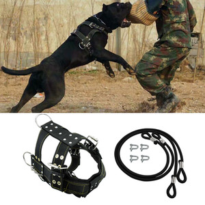 Güçlü Naylon Pet Koşum Köpek Eğitim Ürünleri Büyük Köpekler Ağırlık Alman Çoban K9 Köpek Çeviklik Ürün için Koşum
