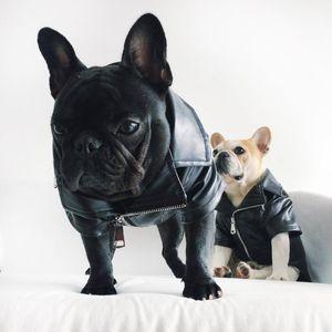 Собака зимы ткань пальто Wear Охладить Глядя собак куртка Фланель Мягкая сплетенная ткань на внутренней полиуретановой кожи на внешней стороне