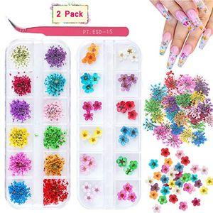 Nail Art 2 Kutular Kuru Çiçekler, 24 Colors Kuru Çiçekler Mini Gerçek Doğal Çiçekler Nail Sanat Malzemeleri 3D Aplike Nail Dekorasyon S