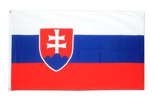 Ücretsiz kargo doğrudan fabrika 3x5 Fts 90 cm x 150 cme 100% Polyester svk sk Slovenska slovakya Bayrağı Dekorasyon Için