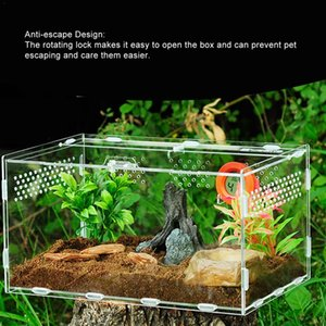 Reptile Tank Insect Spider Tortoise Lizard Small Pet Breeding Box Transparent Acrylic Vivarium Lid Reptile Pet Product Terrarium
