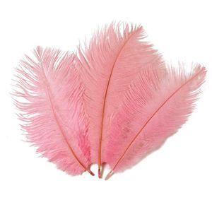 20-25cm plume d'autruche vraie plume naturelle pour la décoration intérieure décoration de mariage parti décoratif mur de plume d'autruche matériel EEA473