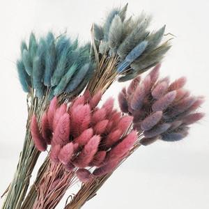 60pcs / lot Gradiente Lagurus ovatus secas naturales conejo cola de flores del ramo de hogar de la boda decoraciones de Pascua Hierba real Flores