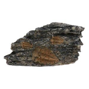 Acuario / reptil roca / Columna / Stump Vivarium corteza Ocultar decoración del ornamento
