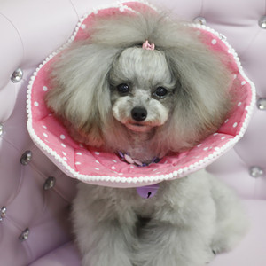4 Pcs Fashion Pet Dog Reflective Shoes Soft Nylon Non Slip Boots