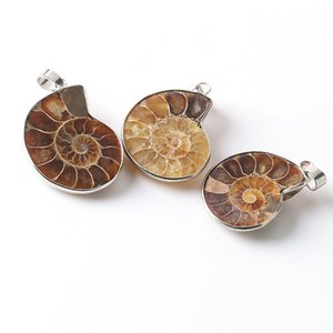 Pierre Naturelle Fossiles D'ammonite Coquillage Escargot Pendentifs Océan Reliquiae Conque Animal Déclaration Hommes Bijoux
