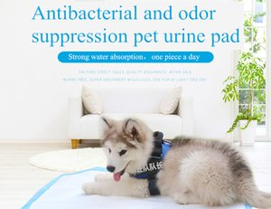 2020 Hot Disposable Pet Dog Diaper Absorbent Pet Antibacterial Deodorant Instant Absorption Dry Leakage Proof Pad