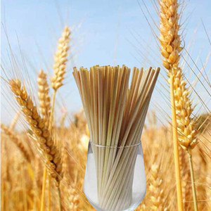 100pcs Wheat Straws Natural Drinking Straws for No Plastic Policy Disposable Biodegradable and Compostable Wheat Straws Bar Kitchen straw