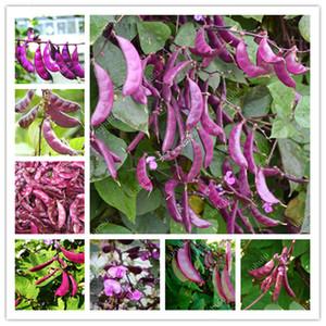 100 Pz dolce viola Lenticchie Bonsai Piselli verdi Fagioli semi Fagioli verdi Fagioli viola di verdure Lenticchie non Meidou Organic giardino di DIY