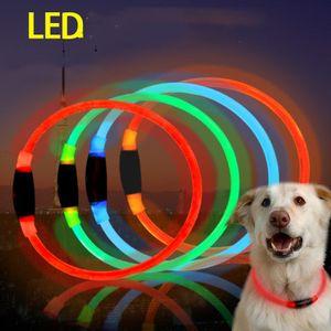 LED Pet Collar para perros Night Safety Flashing Glow en la oscuridad Correa para perros Perros Collares fluorescentes luminosos Suministros para mascotas Envío gratis