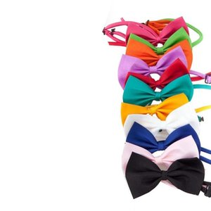Many colors Pet tie Dog tie collar flower accessories decoration Supplies Pure color bowknot necktie Dog Bow Tie