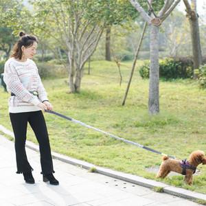 Marsupio Hands Free Dog Walking Ajustable del cavo del guinzaglio esecuzione Jogging Grey