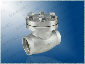 Stainless steel socket welding ultra-low temperature check valve