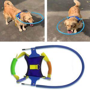 Pasos guía ciego para mascotas anti-colisión Anillo Escorpión cataratas Protección Animal Círculo Arnés para perros pequeño cachorro