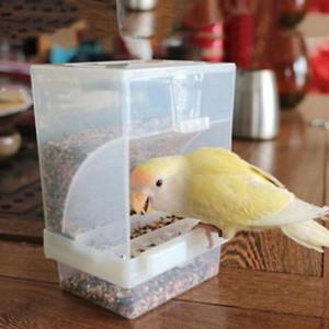Preuve Volailles Chargeur automatique acrylique Contenant à Parrot Pigeon Splash Fournitures Preuve feeders Transparent