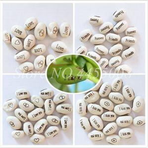 100 PCS Seeds Magic Growing Message Beans Bonsais Magic Bean English Magic Bean flower Potted Green Office Home Decor for Flower Pot Planter
