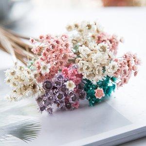 150pcs fleurs séchées Mini Daisy fleur d'étoile Bouquet plantes naturelles pour petits floraux mariage bricolage Décoration