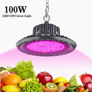 실내 식물 온실 수경 채식과 꽃 방수 IP65를위한 빛 100W 150W 200W 전체 스펙트럼 식물 빛을 성장 LED
