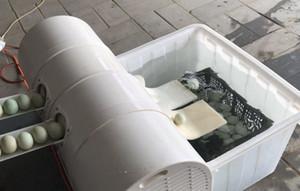 2020 best-sellers Nettoyage Egg eau recyclée lave-linge / Egg Utilisation de la laveuse Nettoyage Œuf Commercial eau recyclée