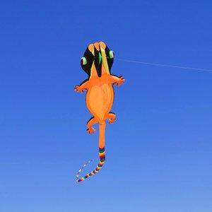 Maison lézard 3D Kite Kite coloré squelette sans queue longue facile à voler plage cerfs-volants sport en plein air Jouer